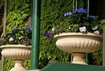 Flower filled urns adorning Centre Court