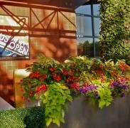Entrance to USTA Tennis Center
