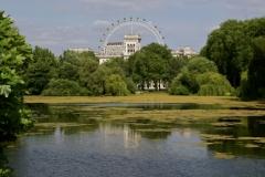 London Eye from St. James Park