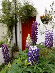 Wimbledon Village doorway