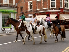 There are street lights for horses and they have the right of way in Wimbledon village.